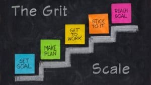 The Grit Scale